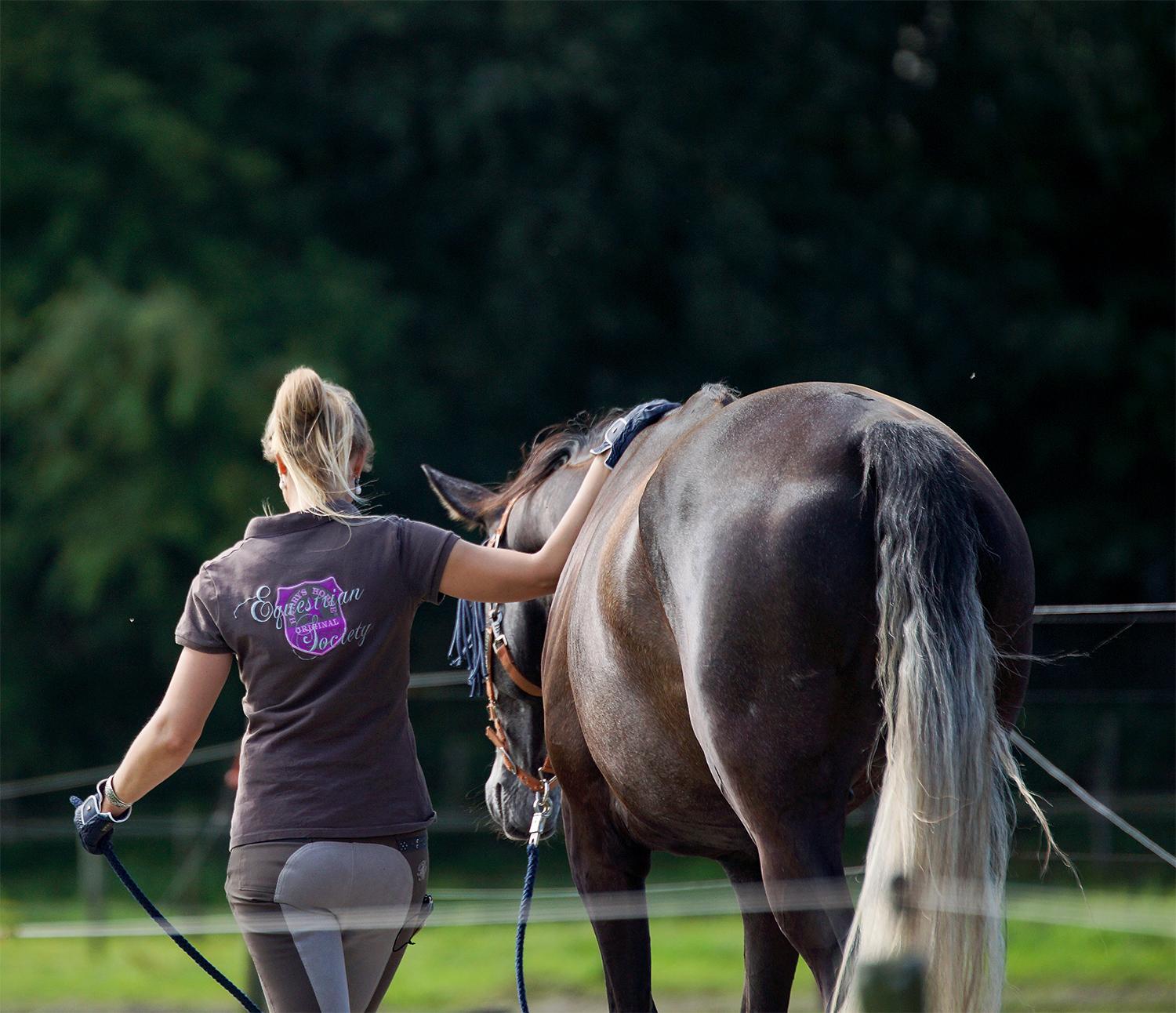 Equine Awareness Centre Merel Burggraaf lolmetjeknol paard paarden