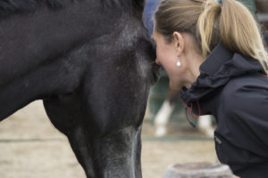 Equine Awareness Centre Merel Burggraaf equine healing paarden paard healing