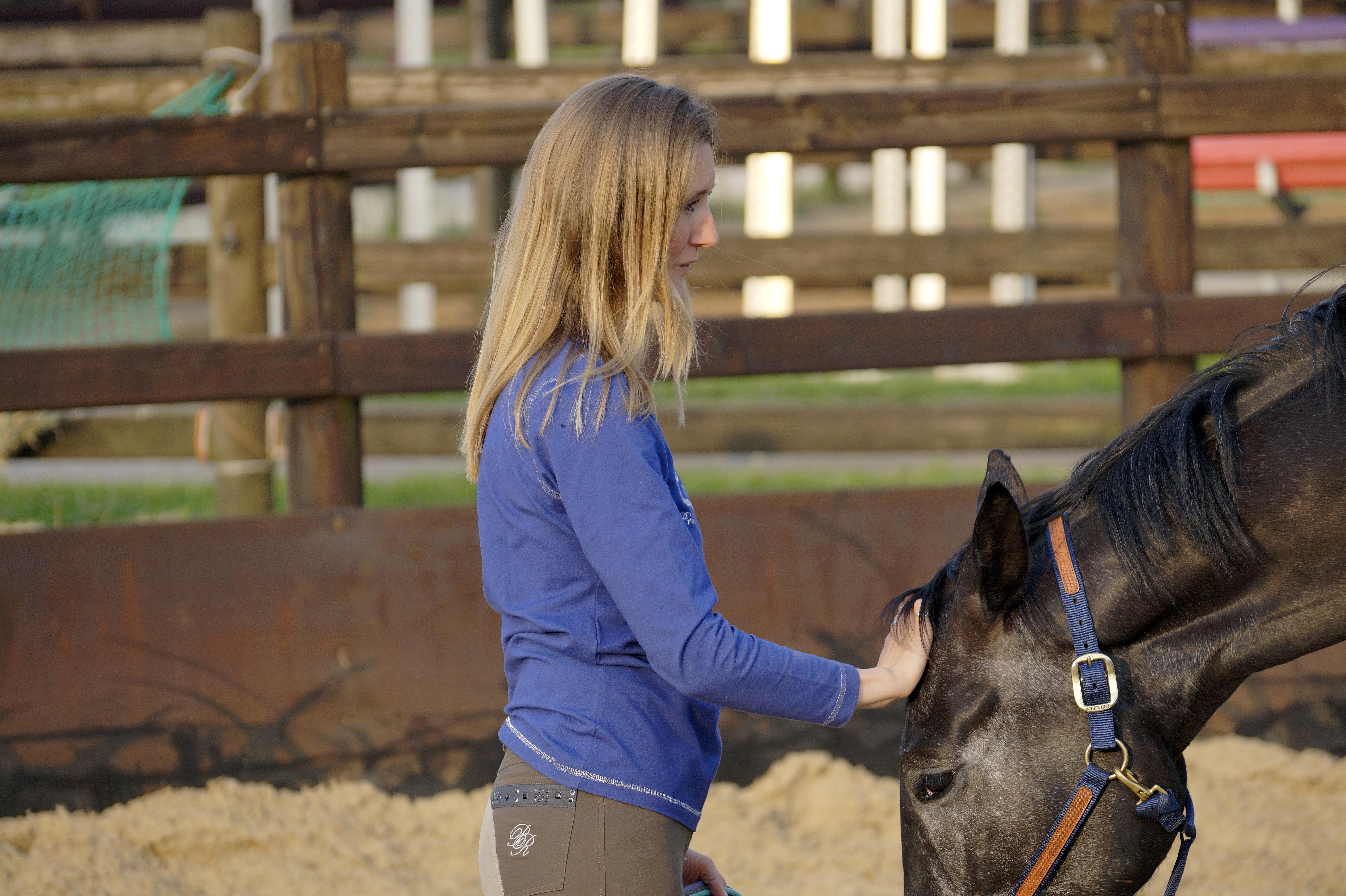 Equine Awareness Centre Merel Burggraaf paard paarden horse equine horses healing art