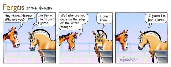 Equine Awareness Centre horse water Merel Burggraaf paard paarden gedragstraining gedragsdeskundige Fergus
