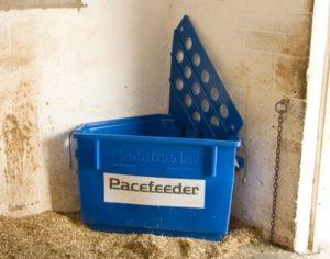 Pacefeeder slowfeeder equine awareness centre Merel Burggraaf paard paarden enrichment of the environment verrijking van de leefomgeving
