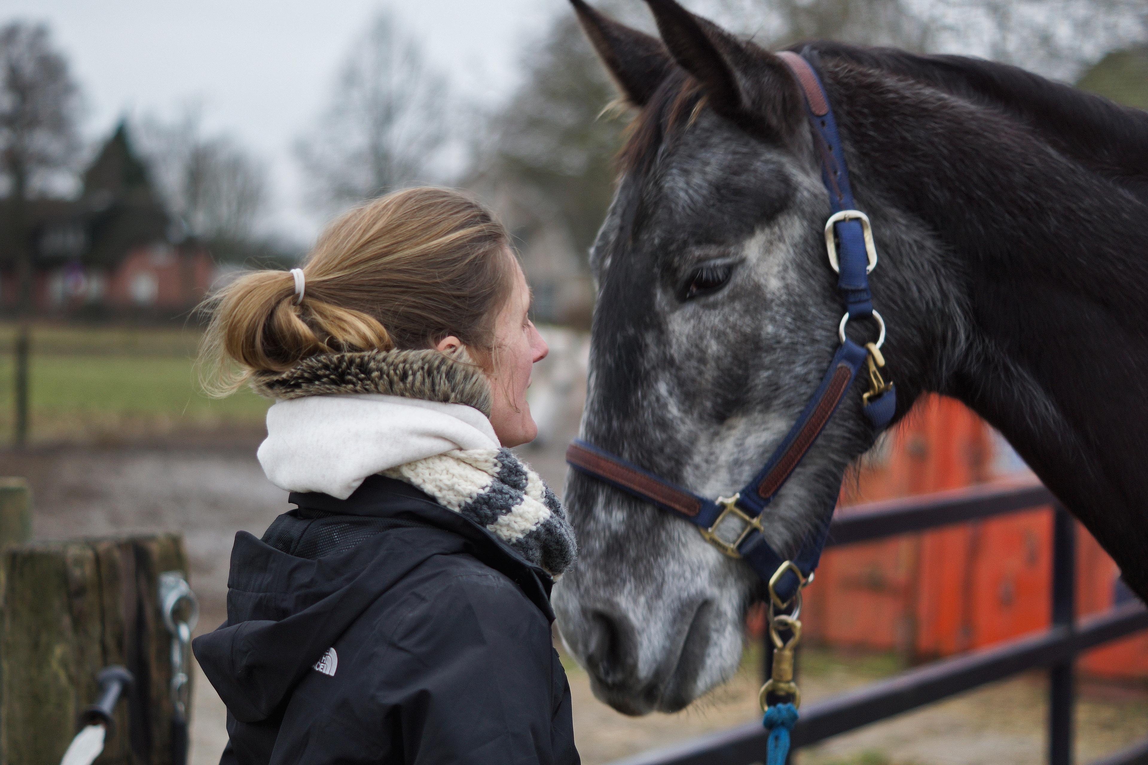 Equine Awareness Centre Merel Burggraaf paardengedrag gedragsdeskundige paarden clickertraining positieve bekrachtiging R+ angst angstagressie vaststaan